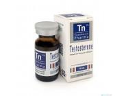 Testosterone C (250mg/ml) TN Pharma