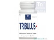 Tribulus+ (40 tablets) TN Pharma